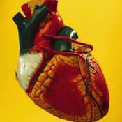 Treatments for an Enlarged Heart