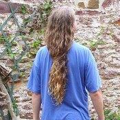 Human Hair Vs. Animal Hair