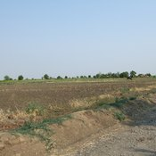 Land pollution is usually the result of man's activities.