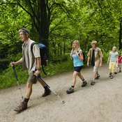 A walking stick is a great tool for hiking.