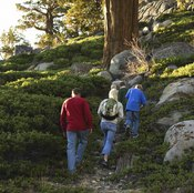 Walking uphill provides aerobic and resistance training for musculoskeletal health.