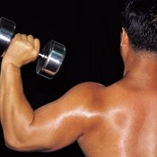 The upper back assists in the shoulder press movement.