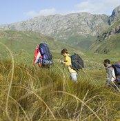 Hiking uphill develops calf muscles.