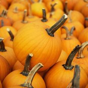 Puree your pumpkin and enjoy several nutritional benefits, including iron and vitamin A.