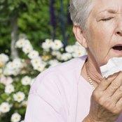 Seasonal allergies are common.