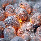 Charcoal is a carbon-based substance.