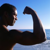 Together, reverse curls and French curls hit all of the major arm muscles.