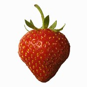 Despite its name and culinary identification, the strawberry is not a true berry in biology.