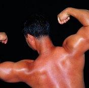 Bodybuilders crave bulging biceps.