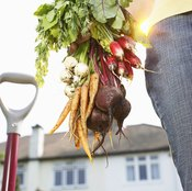 Vegetables like carrots and beets are very nutrient-rich.