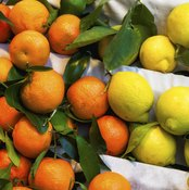 Citrus fruits on stand