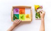 Montessori-Inspired Toys & Kits for Your Little Scientist