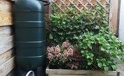 How to Prevent Algae in Rain Barrels