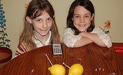 How to Create a Lemon Battery Science Project to Power a Calculator