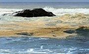 Types of Oil Spills