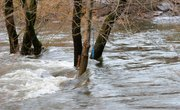 Definition of a Seasonal High Water Table