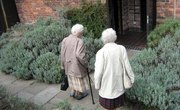 How to Open an Elderly Group Home in Wisconsin