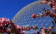 How to Build an Ecosphere