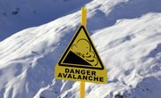 Positive & Negative Effects of an Avalanche