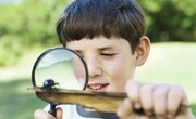 How Do Magnifying Glasses Work?
