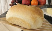 What Are the Independent Variables for a Moldy Bread Experiment?