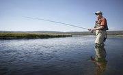 Lingcod Fishing Spots in Washington