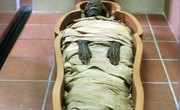 In Ancient Egypt, What Did They Put in a Mummy's Stomach?
