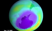 What Percent of UV Does the Ozone Absorb?