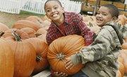 Cute 5th Grade Pumpkin Math Activities