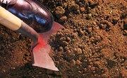 Types of Loam Soil