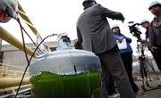 How to Make Biofuel With Algae