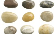 Rock Lessons With Activities for the First Grade