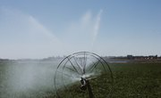 Small Sprinkler Irrigation Models for School Projects