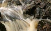 Suwannee River Pollution