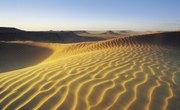 Types of Desert Soil
