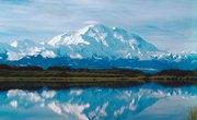Alaskan Tundra Facts