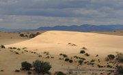 What Is the Average Yearly Rainfall in the Sahara Desert?