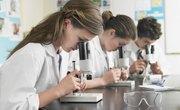 Fun High School Science Experiments