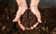 Soil Types in North Carolina