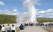 Tips for a Yellowstone Family Vacation