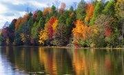 Freshwater Biome Abiotic Factors