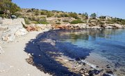 How Does an Oil Spill Affect The Environment?