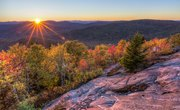 List of Natural Resources in New York State