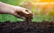 Types of Soil & Their Uses