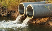 The Effects of Sewage on Aquatic Ecosystems