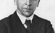 What Do Fossils Have to Do with Wegener's Theory?