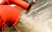 The Microorganisms Found in Sewage