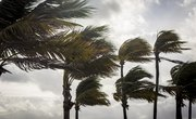 When Is Hurricane Season in Hawaii?