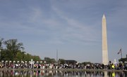 Science and Environmental Activists March on Washington
