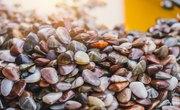 What Happens When You Add Vinegar to Seashells?